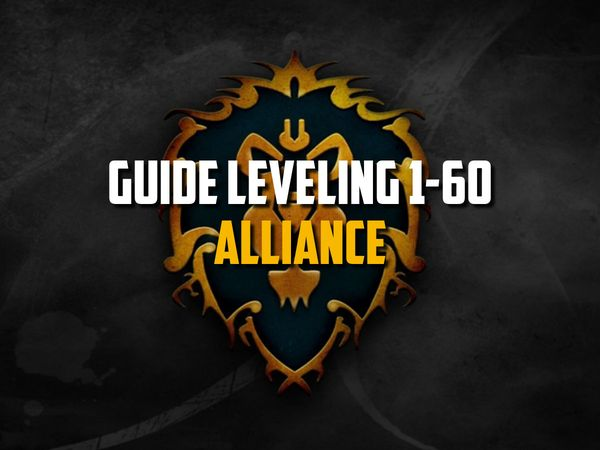 wow classic Guide Leveling 1-60 Alliance