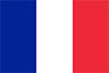View website in Français
